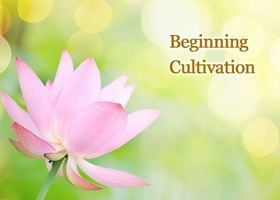 Beginningcultivation2x